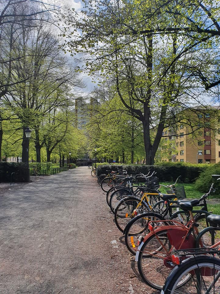 This image has an empty alt attribute; its file name is Malmö-Digital12.jpg